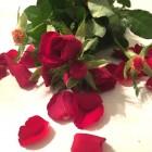 SoBi-Blumenstrauss