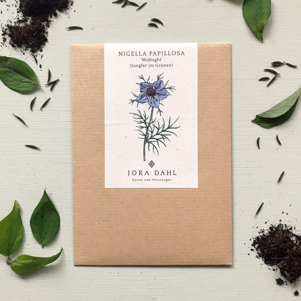 """Historische Blumensamen von Jora Dahl - Nigella hispanica """"Midnight"""" (Jungfer im Grünen)"""